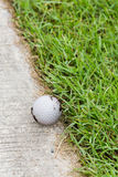 Golf ball on the cart path Royalty Free Stock Photo