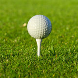 Golf ball close up. Golf ball on the tee close up Stock Image