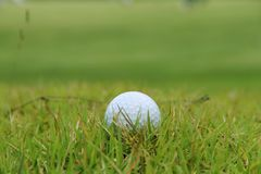 Golf ball close up in golf coures at Thailand. Golf ball close up in grass field with sunset. Golf ball close up in golf coures at Thailand Royalty Free Stock Photos