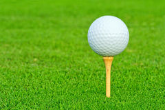 Golf ball closeup Royalty Free Stock Image