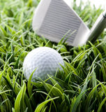 Golf ball and club. Putting on green Stock Photography