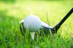 Golf ball and golf club in beautiful golf course at Thailand. Collection of golf equipment resting on green grass with green. Golf ball and golf club in royalty free stock images