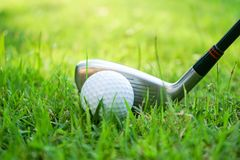 Golf ball and golf club in beautiful golf course at Thailand. Collection of golf equipment resting on green grass with green. Golf ball and golf club in stock images