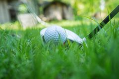 Golf ball and golf club in beautiful golf course at Thailand. Collection of golf equipment resting on green grass with green. Golf ball and golf club in stock image
