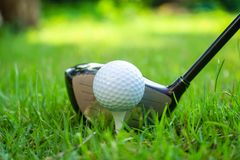 Golf ball and golf club in beautiful golf course at Thailand. Collection of golf equipment resting on green grass with green. Golf ball and golf club in stock photos