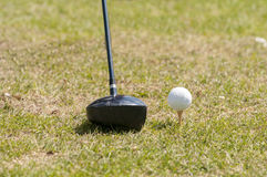 Golf ball and a club Royalty Free Stock Photos