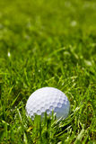 Golf ball. With copy space Stock Photo