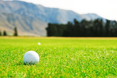 Golf ball on the course Royalty Free Stock Image