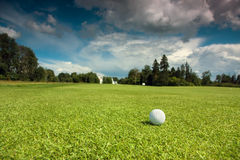 Golf ball on the course. Green grass, blue sky and white clouds Stock Image