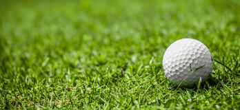 Golf ball on course. Golf ball on green grass of golf course, copy space Royalty Free Stock Images
