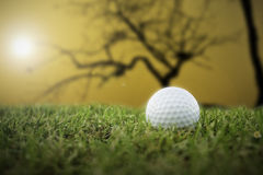 Golf-ball on course Royalty Free Stock Photography