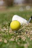 A golf ball and driver Royalty Free Stock Photos