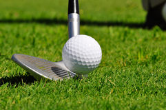 Golf ball and driver. Ready to strike, on a real golf course Stock Image