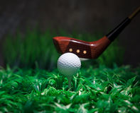 Golf ball and driver on green grass Stock Image