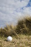 Golf ball in dunes 2. Lost golf ball in the sand dunes of a British links golf course on a bright Spring day Stock Images