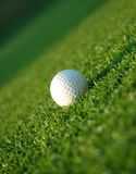 Golf ball on the fairway Royalty Free Stock Photography