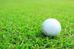 Golf ball in fairway Stock Photos