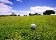 Golf ball on fairway. Of beautiful golf course royalty free stock photography