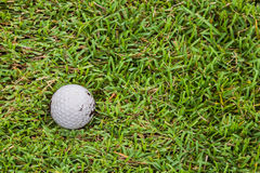 Golf ball on fairway. Close up dirty golf ball on the fairway Stock Images