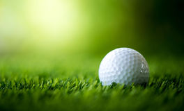 Golf ball on fairway. Golf course Stock Photo