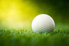 Golf ball on fairway Royalty Free Stock Image