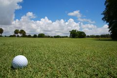 Golf Ball on Fairway. A golf ball rests on the newly mowed green grass of the fairway beneath the distant treeline and a partly cloudy sky in the summertime in royalty free stock photography
