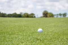 Golf Ball on Fairway stock photography