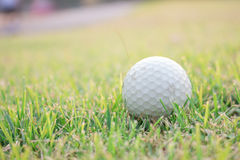 Golf ball on field Royalty Free Stock Photos