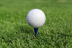 Golf ball and Flagstick of  Manicured grass of putting green. Of golf course Royalty Free Stock Photos