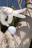 Golf ball flick. Golfer's ball is stuck in a tree and he uses his finger club to knock it off Royalty Free Stock Images