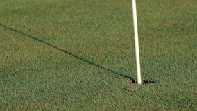 Golf ball getting into hole stock video footage