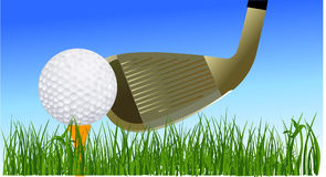Golf ball and glove Royalty Free Stock Photo