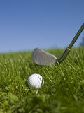 Golf ball and golf club. In green gras Stock Image