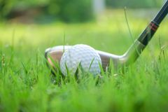 Golf ball and golf club in beautiful golf course at Thailand. Collection of golf equipment resting on green grass with green. Golf ball and golf club in stock photography