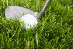 Golf Ball and Club. A golf ball and golf club in grass Stock Images