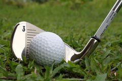 Golf ball and golf iron club. A golf ball is lying on a grassy fairway of a golf course and ready to be hit using no. 3 golf iron club Stock Image