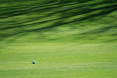 Golf Ball on Grass Royalty Free Stock Photos