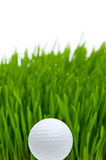Golf ball on the  grass Royalty Free Stock Photography
