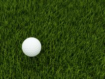 Golf ball on grass Royalty Free Stock Photo