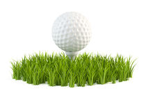 Golf ball on grass. 3d illustration of golf ball and grass on white background Stock Photos