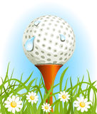 Golf ball on the grass Royalty Free Stock Photo