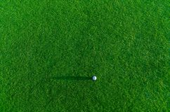 Golf ball on a grass Royalty Free Stock Photos