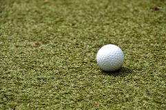 Golf ball on grass. Golf ball on green grass royalty free stock images