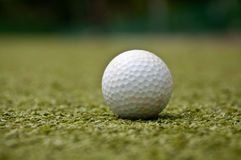 Golf ball on grass Stock Photography
