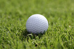 Golf ball on grass Royalty Free Stock Image