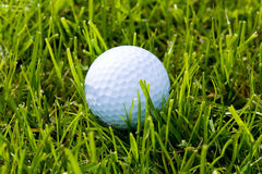 Golf Ball and Grass Royalty Free Stock Photo