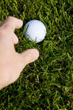 Golf Ball and Grass Royalty Free Stock Photography