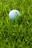 Golf Ball and Grass Stock Images