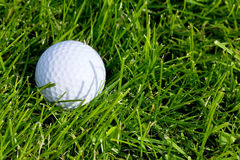Golf Ball and Grass Royalty Free Stock Photos