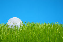 Golf ball in grass. Macro closeup stock photography